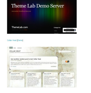 dr web wordpress theme