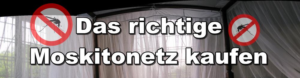 das richtige moskitonetz kaufen eine stichwahl online artikel. Black Bedroom Furniture Sets. Home Design Ideas